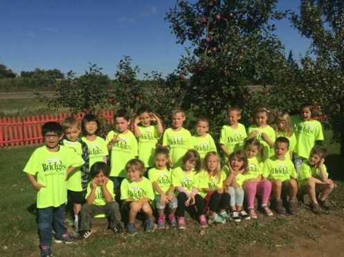Calin Apple Orchard